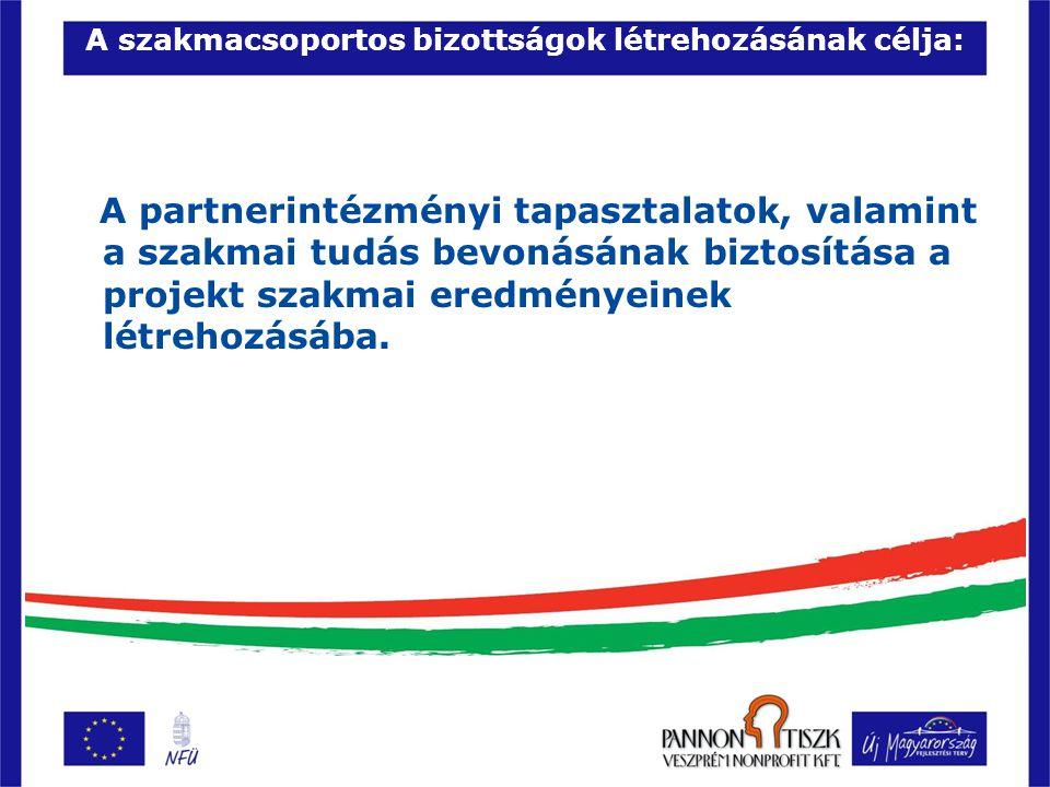 A szakmacsoportos bizottságok feladata 1 : A meghatározott tartalmi fejlesztések létrehozása, illetve a szakmai eredmények megvitatása, a közösségi szolgáltatások és a tananyagfejlesztés eredményes megvalósításának elősegítése a projektben résztvevő szakképző partnerintézményekben, ennek érdekében az intézmény pedagógusainak bevonása.
