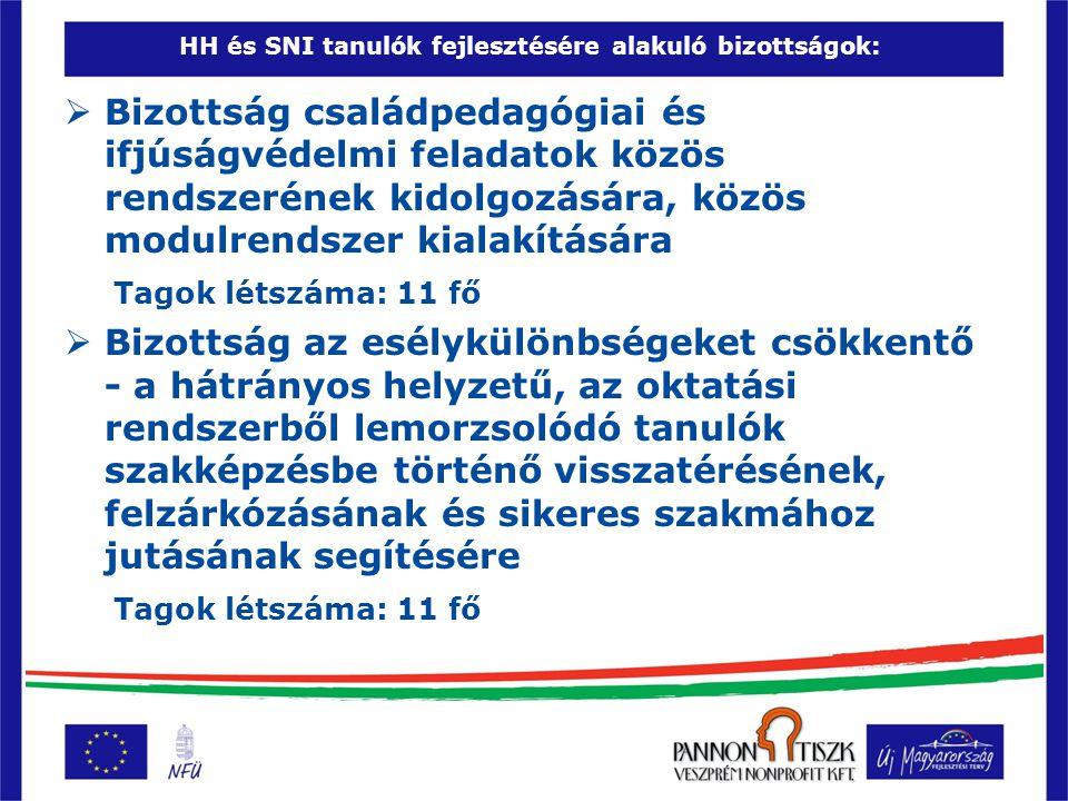 HH és SNI tanulók fejlesztésére alakuló bizottságok: A bizottságok létrehozásának célja:  a családpedagógiai és ifjúságvédelmi feladatok közös rendszerének kidolgozása  esélykülönbségeket csökkentő - a hátrányos helyzetű, az oktatási rendszerből lemorzsolódó tanulók szakképzésbe történő visszatérését, felzárkózását és sikeres szakmához jutását segítő speciális oktatási – nevelési és képzési igényeknek megfelelő programok fejlesztése  partnerintézményi tapasztalatok, valamint a szakmai tudás bevonásának biztosítása a projekt szakmai eredményeinek létrehozásába.