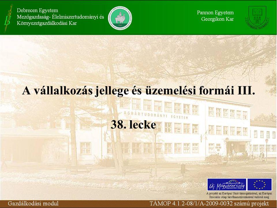 A vállalkozás jellege és üzemelési formái III. 38. lecke