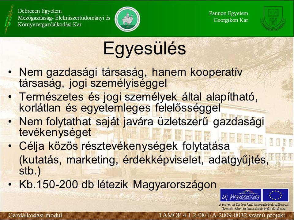 Egyesülés Nem gazdasági társaság, hanem kooperatív társaság, jogi személyiséggel Természetes és jogi személyek által alapítható, korlátlan és egyetemleges felelősséggel Nem folytathat saját javára üzletszerű gazdasági tevékenységet Célja közös résztevékenységek folytatása (kutatás, marketing, érdekképviselet, adatgyűjtés, stb.) Kb.150-200 db létezik Magyarországon