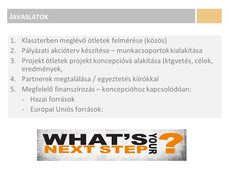J AVASLATOK 1.Klaszterben meglévő ötletek felmérése (közös) 2.Pályázati akcióterv készítése – munkacsoportok kialakítása 3.Projekt ötletek projekt koncepcióvá alakítása (ktgvetés, célok, eredmények, 4.Partnerek megtalálása / egyeztetés kiírókkal 5.Megfelelő finanszírozás – koncepcióhoz kapcsolódóan: -Hazai források -Európai Uniós források:
