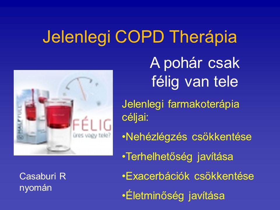 Jelenlegi COPD Therápia A pohár csak félig van tele Jelenlegi farmakoterápia céljai: Nehézlégzés csökkentése Terhelhetőség javítása Exacerbációk csökk