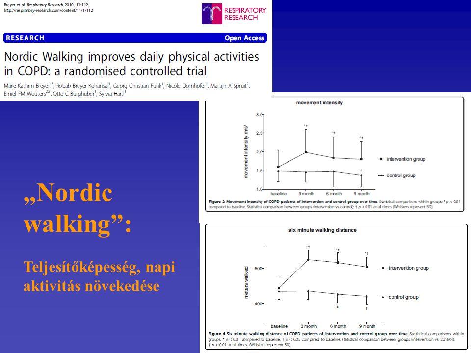 """""""Nordic walking"""": Teljesítőképesség, napi aktivitás növekedése"""
