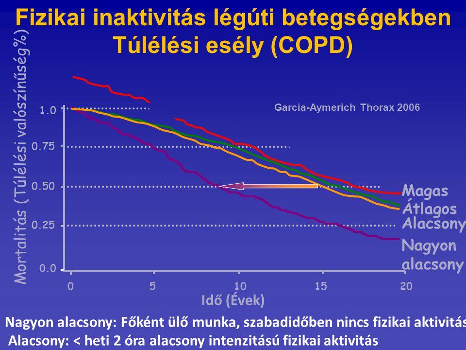 0.50 Mortalitás (Túlélési valószínűség%) 0.75 1.0 0.25 0.0 0 5101520 Magas Átlagos Alacsony Nagyon alacsony Nagyon alacsony: Főként ülő munka, szabadi