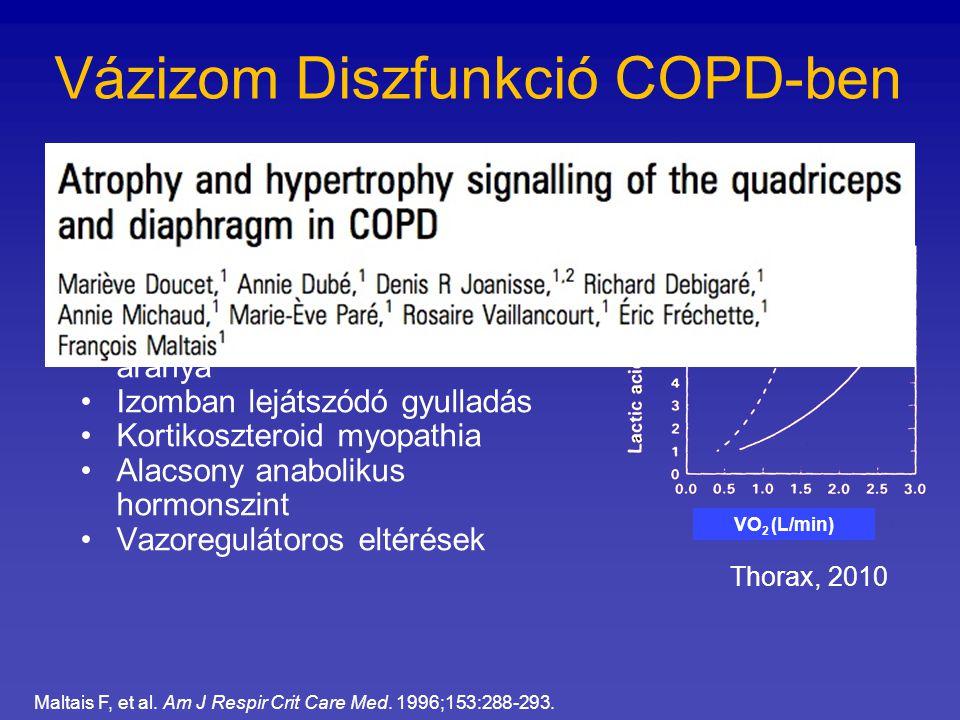 Vázizom Diszfunkció COPD-ben Alacsony izomtömeg Nem megfelelő kapilarizáltság Alacsony oxidatív enzim aktivitás I-es típusú izomrostok alacsony aránya