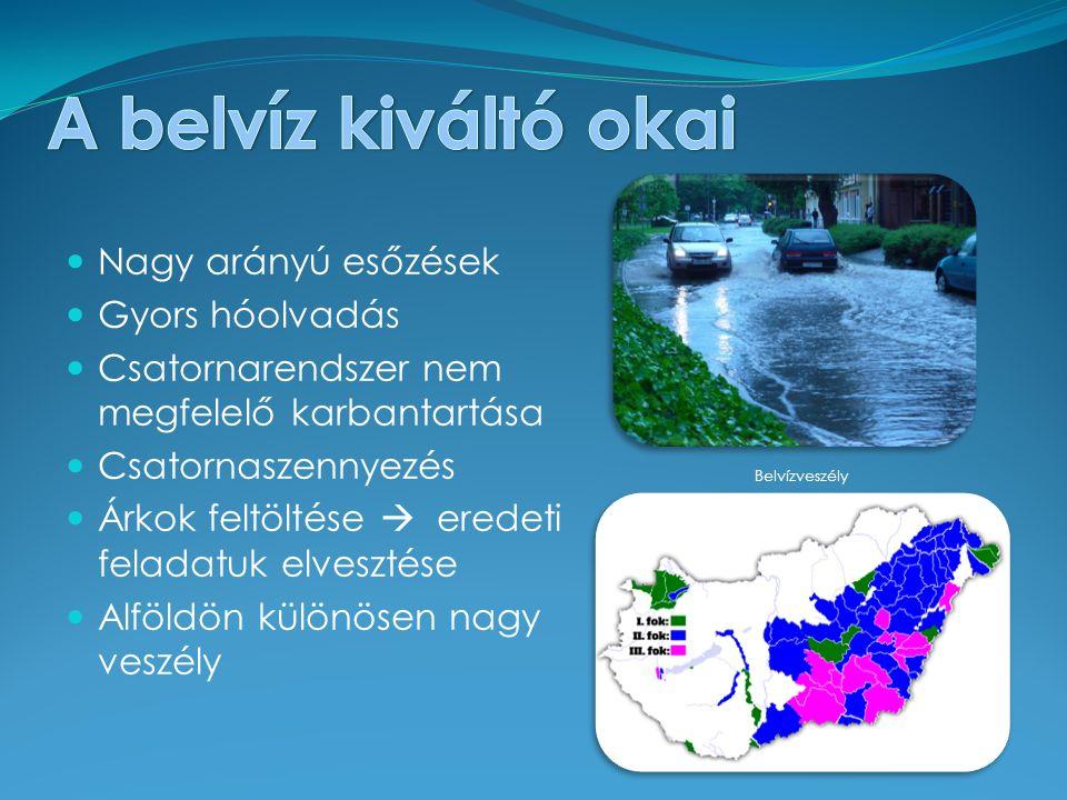 Nagy arányú esőzések Gyors hóolvadás Csatornarendszer nem megfelelő karbantartása Csatornaszennyezés Árkok feltöltése  eredeti feladatuk elvesztése Alföldön különösen nagy veszély Belvízveszély