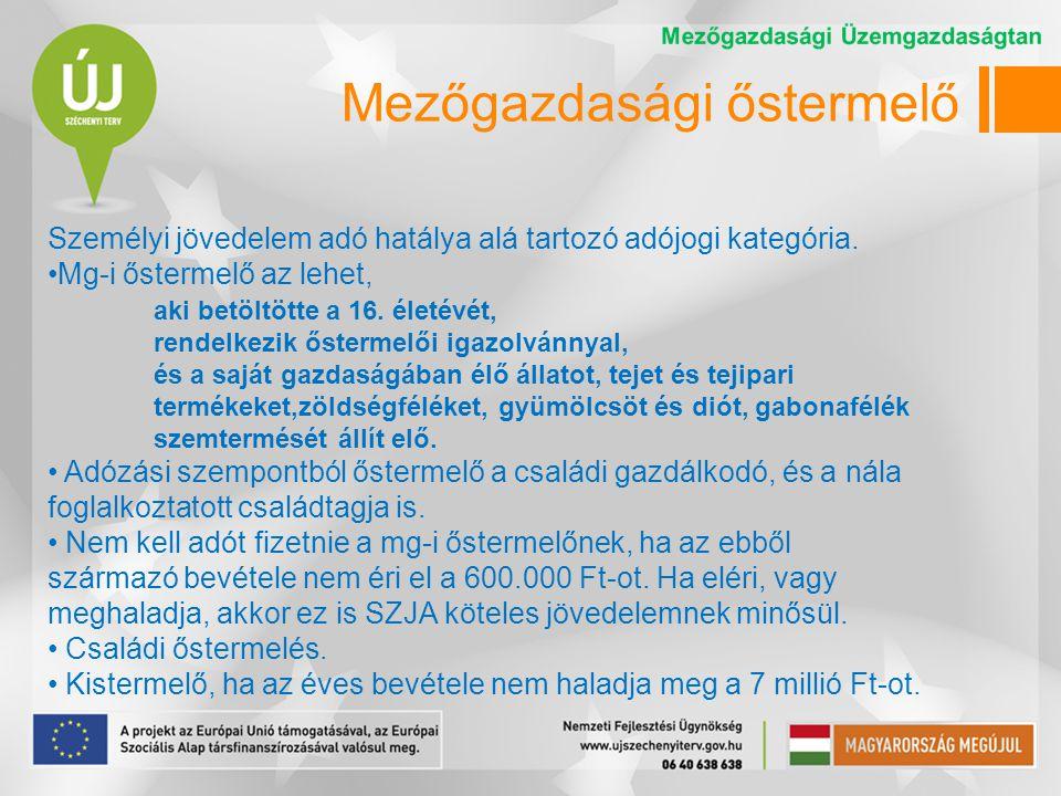 Egyéni gazdaságok Gazdaság típusok Csak saját fogyasztásra termelő (51,3%) A saját fogyasztáson felüli felesleget értékesítő (33,1%) Elsősorban értékesítésre termelő (15,5%) Mezőgazdasági szolgáltatást végző (0,1%) Forrás:A magyar mezőgazdaság és élelmiszeripar számokban, 2007
