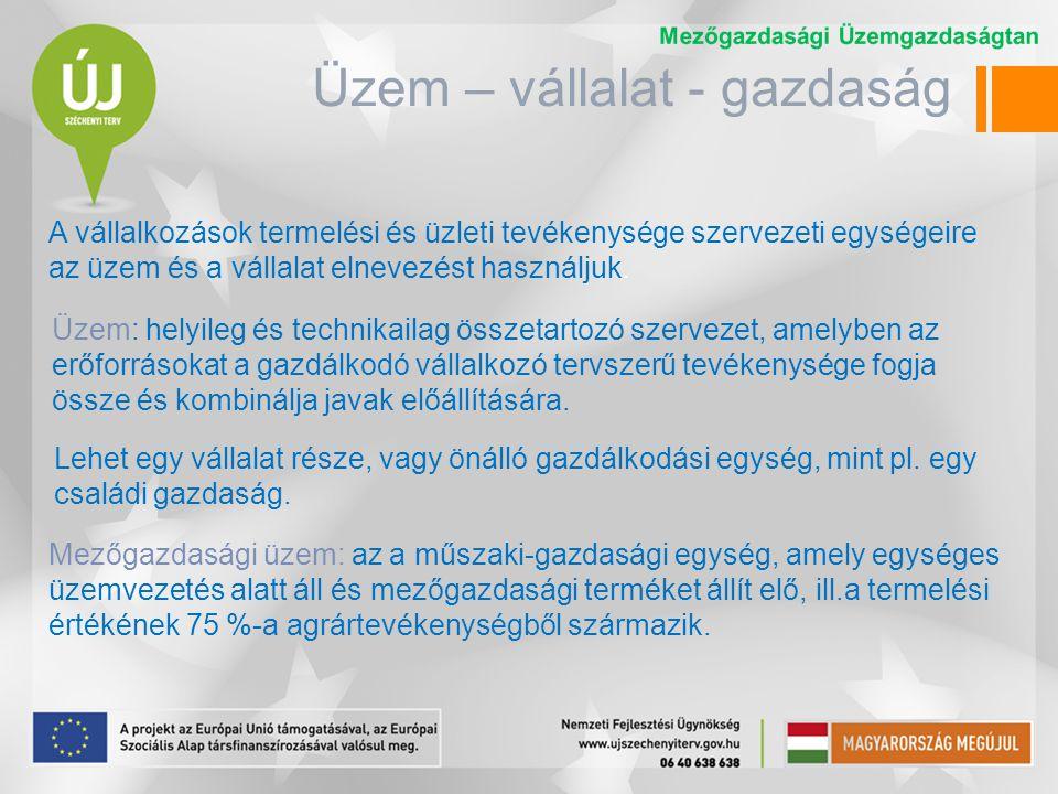 Üzem – vállalat - gazdaság Vállalat: gazdasági, jogi és pénzügyi szempontból vett gazdálkodó szervezet.