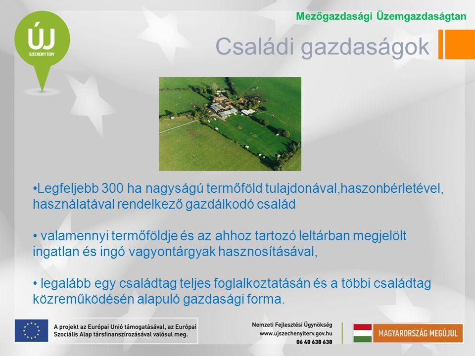 Családi gazdálkodó A családi gazdaság vezetőjeként annak tevékenységi körében kötelezettséget vállalhat, és jogokat szerezhet; élethivatásszerűen mezőgazdasági tevékenységet folytat; mezőgazdasági vagy erdészeti szakirányú képzettséggel rendelkezik (vagy ennek hiányában 3 éve igazolhatóan mg-i tevékenységet végez); legalább 3 éve a bejelentett állandó lakhelye a családi gazdaság székhelyén van; vagy vállalkozói igazolvány, vagy őstermelői igazolvány birtokában végzi a tevékenységet.