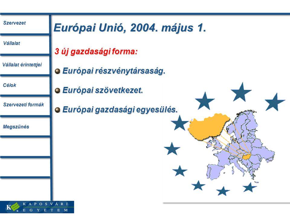 Európai Unió, 2004. május 1. 3 új gazdasági forma: Európai részvénytársaság. Európai részvénytársaság. Európai szövetkezet. Európai szövetkezet. Európ