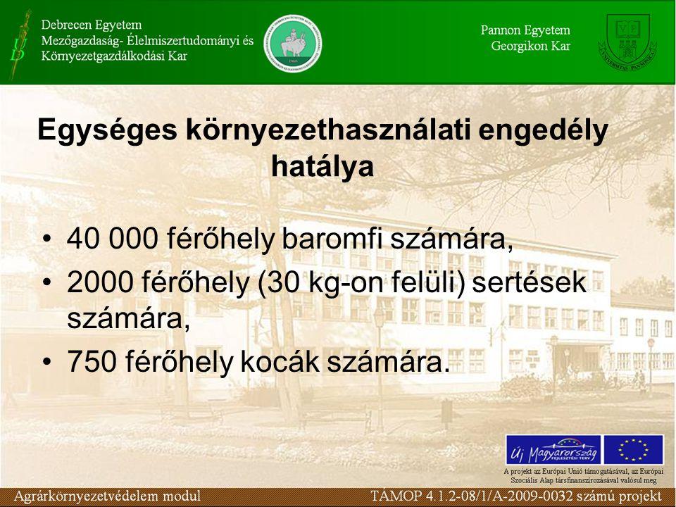 Kötelezések 2001.
