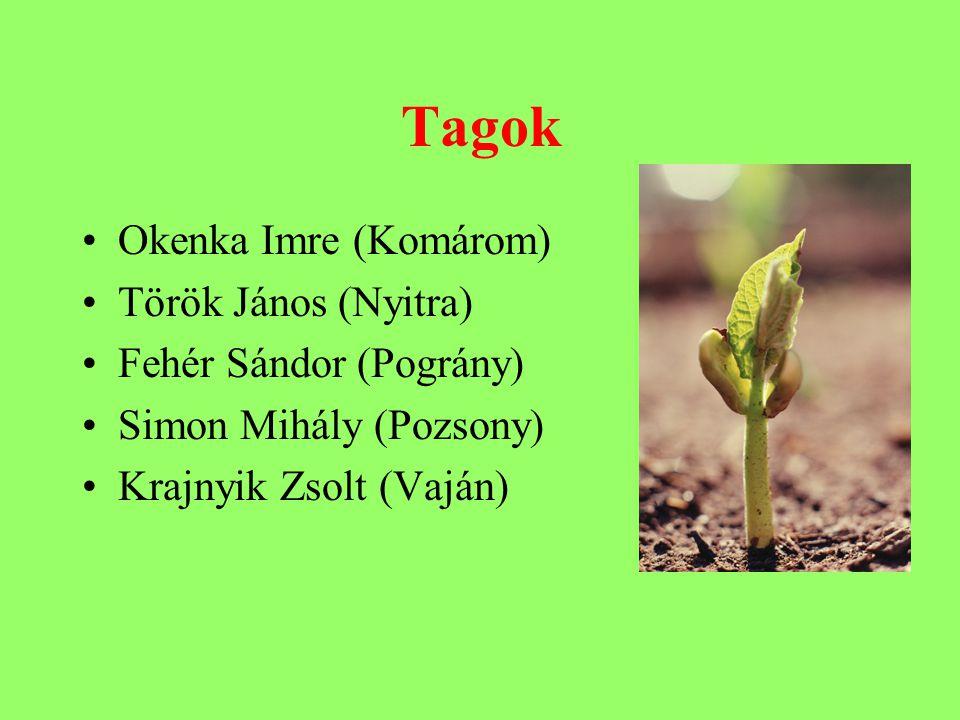 Tagok Okenka Imre (Komárom) Török János (Nyitra) Fehér Sándor (Pográny) Simon Mihály (Pozsony) Krajnyik Zsolt (Vaján)