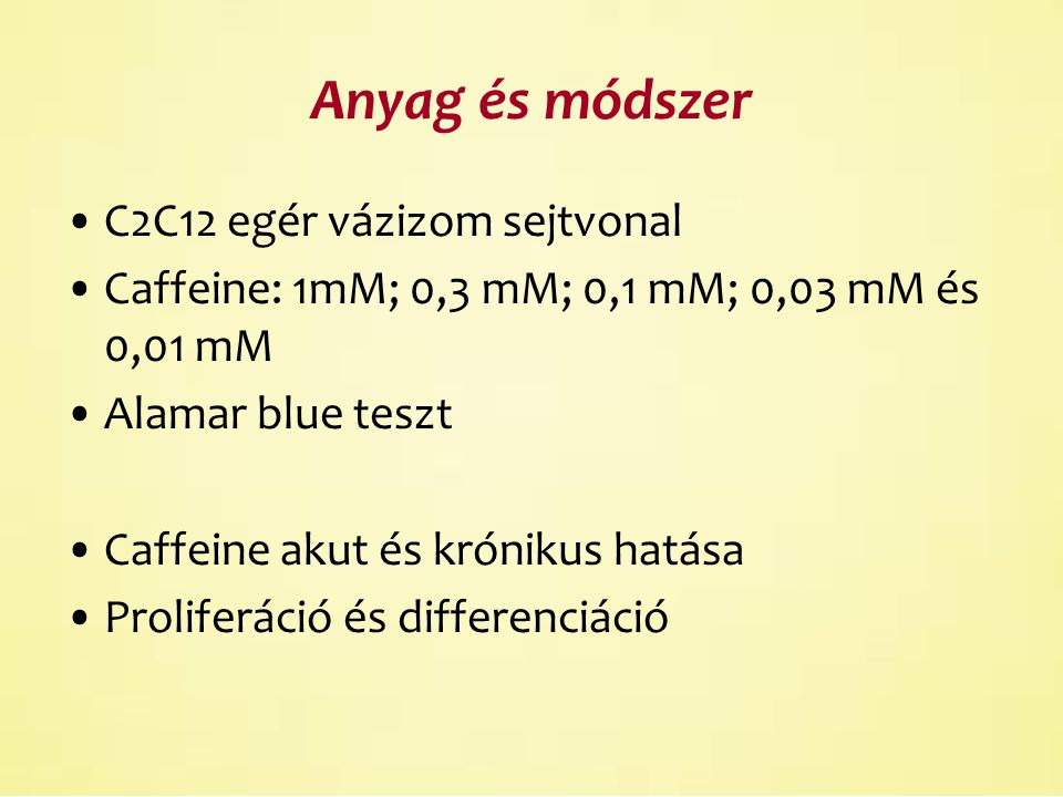 Caffeine hatása differenciálatlan C2C12 sejtekre