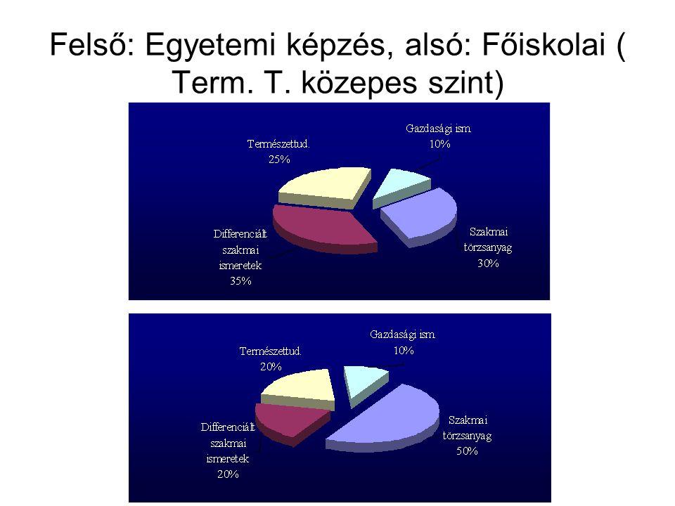Felső: Egyetemi képzés, alsó: Főiskolai ( Term. T. közepes szint)