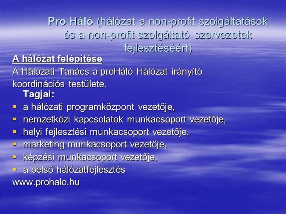 Pro Háló (hálózat a non-profit szolgáltatások és a non-profit szolgáltató szervezetek fejlesztéséért) A hálózat felépítése A Hálózati Tanács a proHáló
