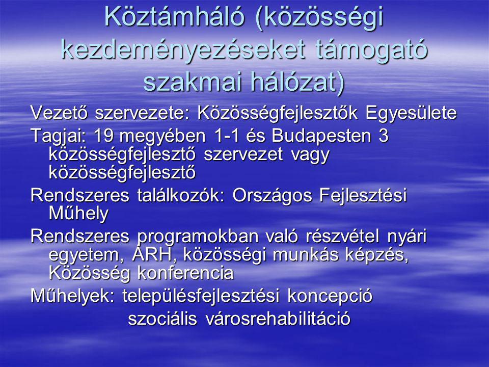 Köztámháló (közösségi kezdeményezéseket támogató szakmai hálózat) Vezető szervezete: Közösségfejlesztők Egyesülete Tagjai: 19 megyében 1-1 és Budapest