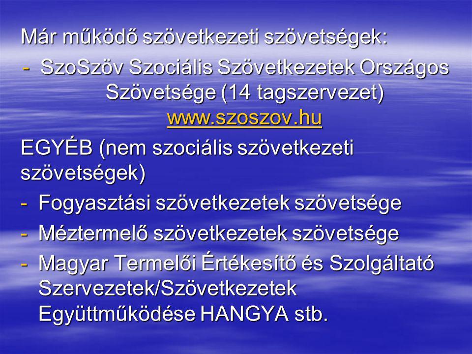 Már működő szövetkezeti szövetségek: -SzoSzöv Szociális Szövetkezetek Országos Szövetsége (14 tagszervezet) www.szoszov.hu www.szoszov.hu EGYÉB (nem s