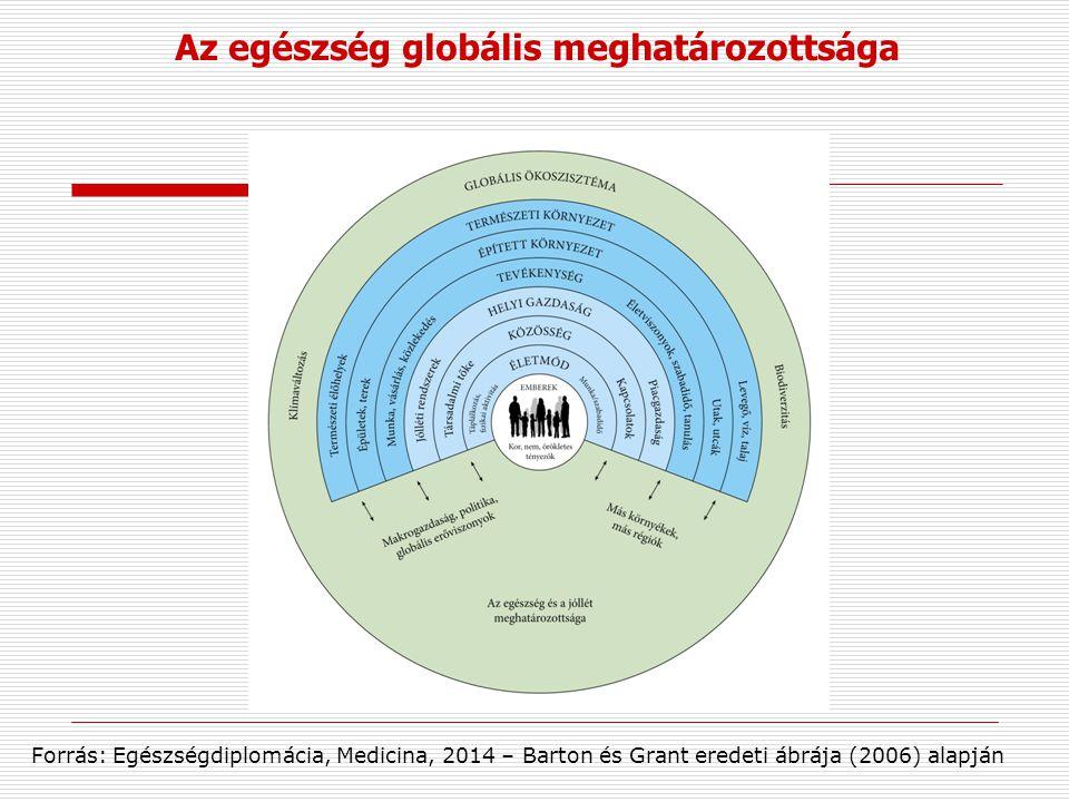 Az egészség globális meghatározottsága Forrás: Egészségdiplomácia, Medicina, 2014 – Barton és Grant eredeti ábrája (2006) alapján
