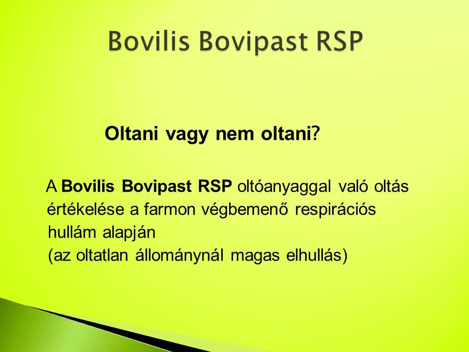 Oltani vagy nem oltani ? A Bovilis Bovipast RSP oltóanyaggal való oltás értékelése a farmon végbemenő respirációs hullám alapján (az oltatlan állomány