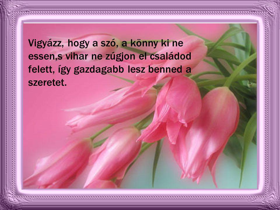 Míg eljön Urunk, s bú válik örömre, s virágcsokrába beköt majd örökre. Las Buscaglia /