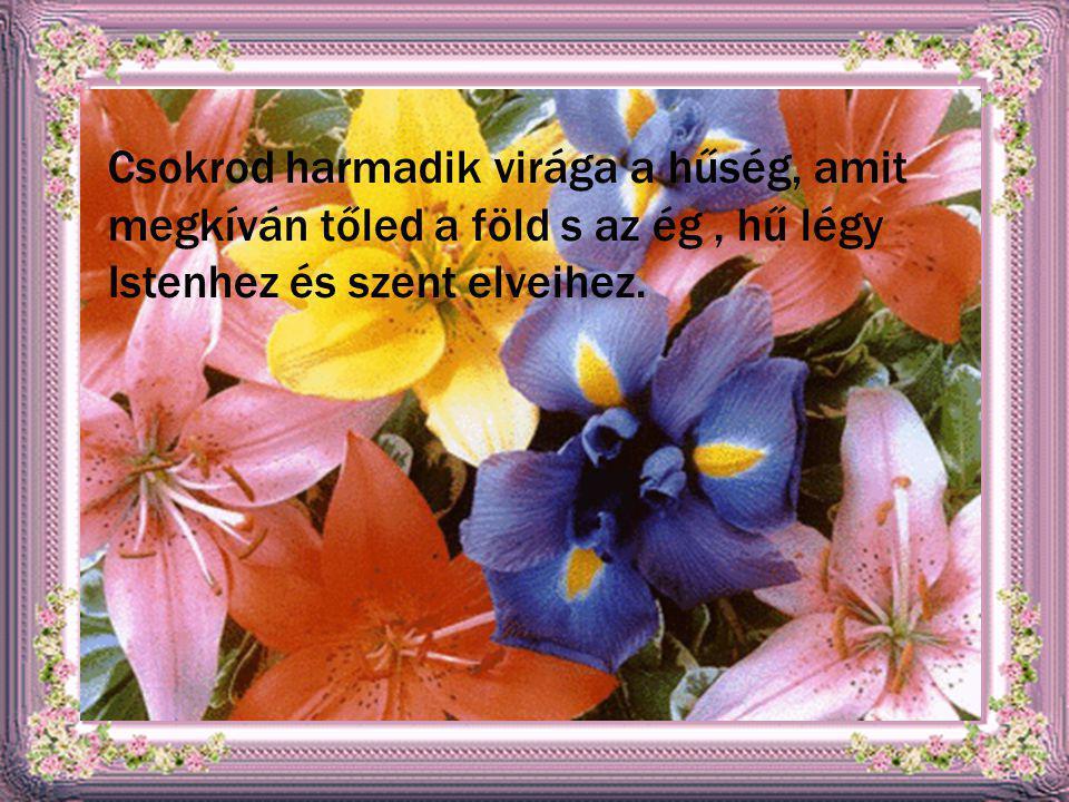 Csokrod harmadik virága a hűség, amit megkíván tőled a föld s az ég, hű légy Istenhez és szent elveihez.