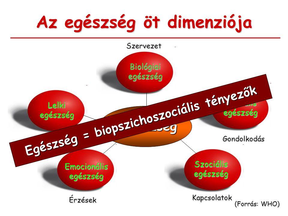 Az egészség öt dimenziója Biológiai egészség Lelki egészség Mentális egészség Emocionális egészség Szociális egészség (Forrás: WHO) EGÉSZség Szervezet A tudat nyugalma Érzések Gondolkodás Kapcsolatok Egészség = biopszichoszociális tényezők