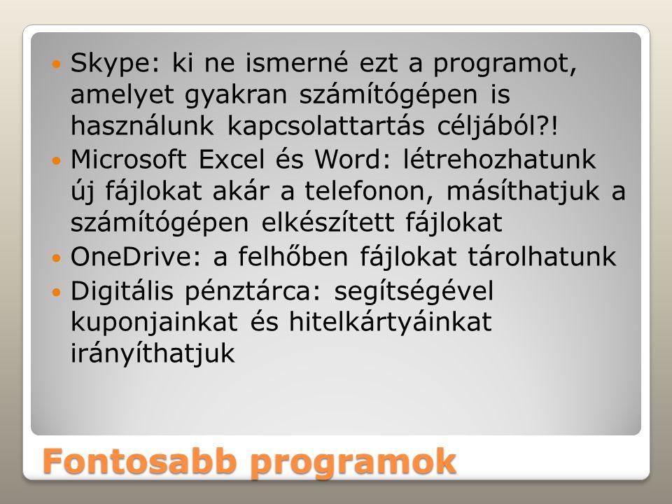 Fontosabb programok Skype: ki ne ismerné ezt a programot, amelyet gyakran számítógépen is használunk kapcsolattartás céljából?! Microsoft Excel és Wor