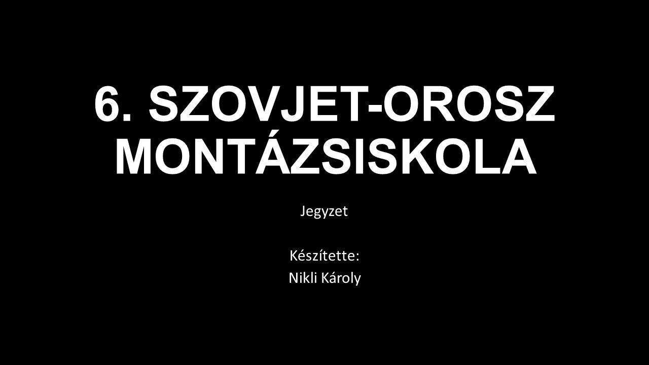 Dziga Vertov A Kinoglaz-sorozatban tűnik fel filmjeinek az a jellegzetessége, melyet lírai dokumentumfilm -nek lehet nevezni.