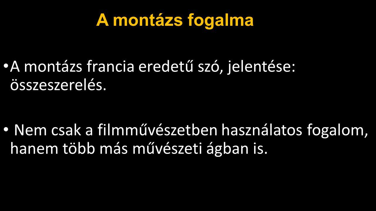 Dziga Vertov Dziga Vertov legjelentősebb filmjei: Filmszem (1924) A világ egyhatoda (1926) Ember a felvevőgéppel (1929)