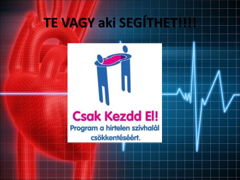 A szív működése http://egeszseg.origo.hu/swf/animacio/keringes /sziv-felepitese/ http://www.50plusz.hu/mediatar/media/Ingerv ezeto_rendszer/112 KKID=3F8744F0- CD1EA723-BA3389C8-F301C24C