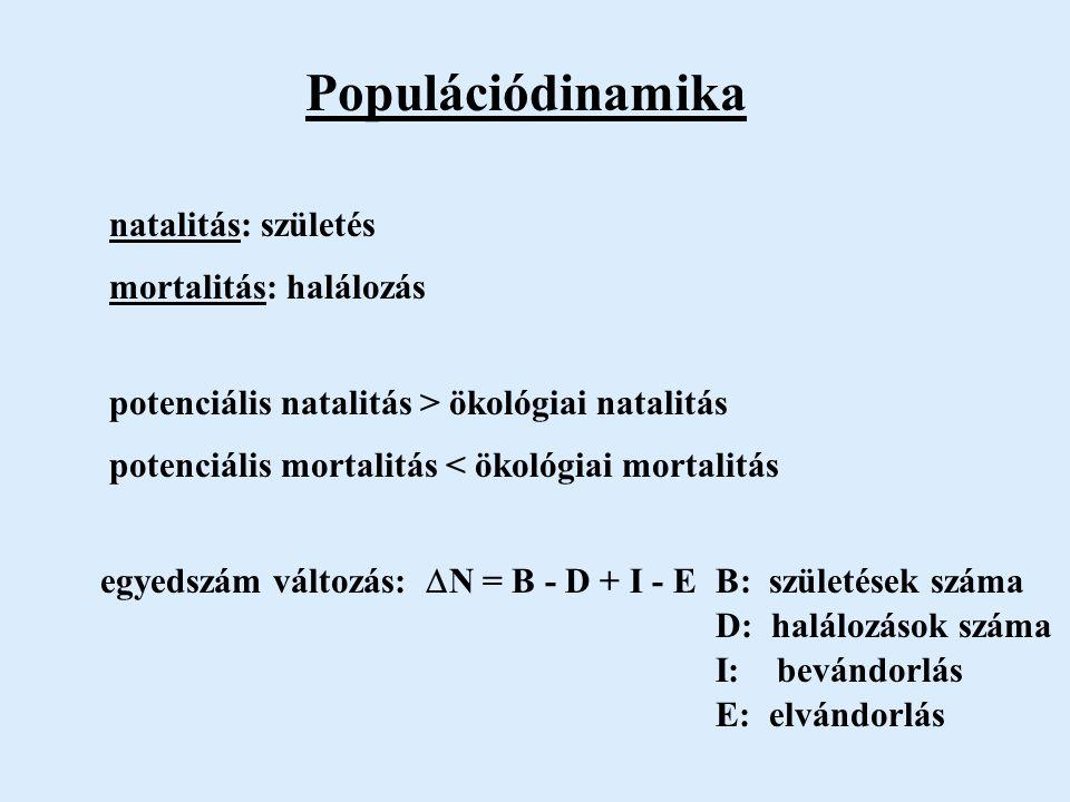 Populációdinamika potenciális natalitás > ökológiai natalitás potenciális mortalitás < ökológiai mortalitás natalitás: születés mortalitás: halálozás egyedszám változás:  N = B - D + I - E B: születések száma D: halálozások száma I: bevándorlás E: elvándorlás