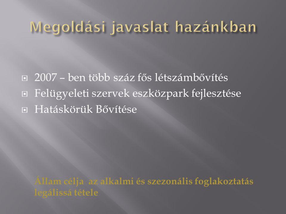  2007 – ben több száz fős létszámbővítés  Felügyeleti szervek eszközpark fejlesztése  Hatáskörük Bővítése Állam célja az alkalmi és szezonális foglakoztatás legálissá tétele