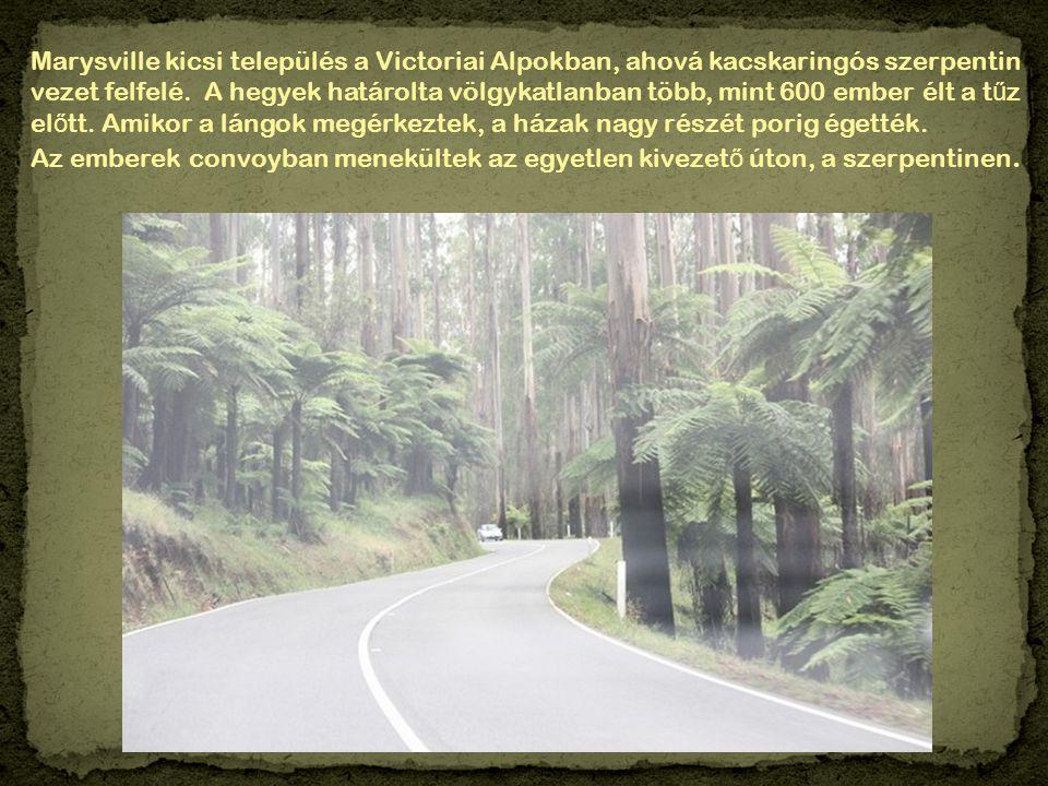 Marysville kicsi település a Victoriai Alpokban, ahová kacskaringós szerpentin vezet felfelé.
