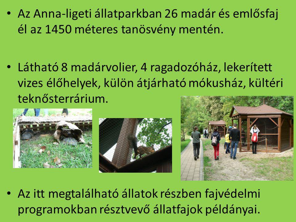 Az Anna-ligeti állatparkban 26 madár és emlősfaj él az 1450 méteres tanösvény mentén. Látható 8 madárvolier, 4 ragadozóház, lekerített vizes élőhelyek