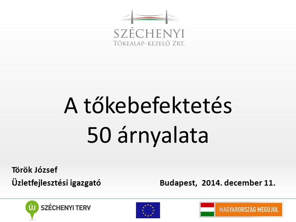 A tőkebefektetés 50 árnyalata Török József Üzletfejlesztési igazgató Budapest, 2014. december 11.