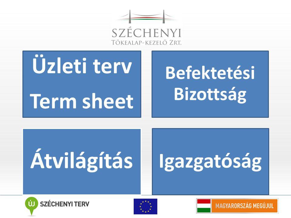 Üzleti terv Term sheet Befektetési Bizottság Átvilágítás Igazgatóság
