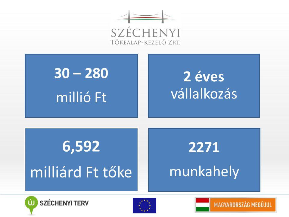 30 – 280 millió Ft 2 éves vállalkozás 6,592 milliárd Ft tőke 2271 munkahely