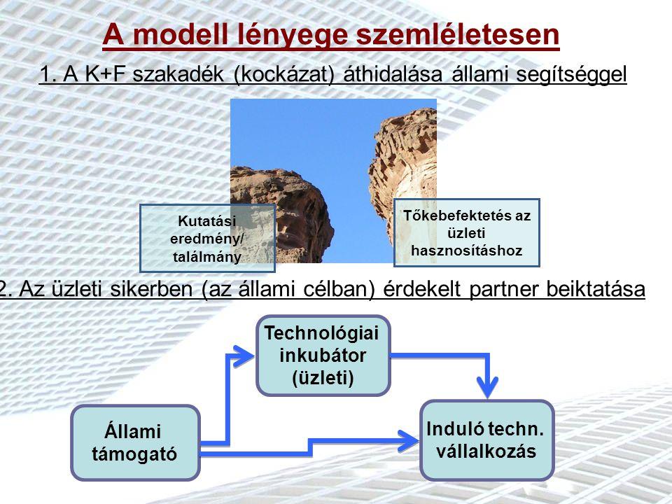 Turi M.- Korányi L. Milyen problémákon segíthet az izraeli inkubátor modell.