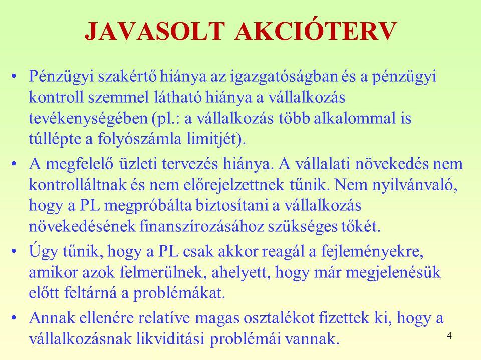JAVASOLT AKCIÓTERV Pénzügyi szakértő hiánya az igazgatóságban és a pénzügyi kontroll szemmel látható hiánya a vállalkozás tevékenységében (pl.: a váll
