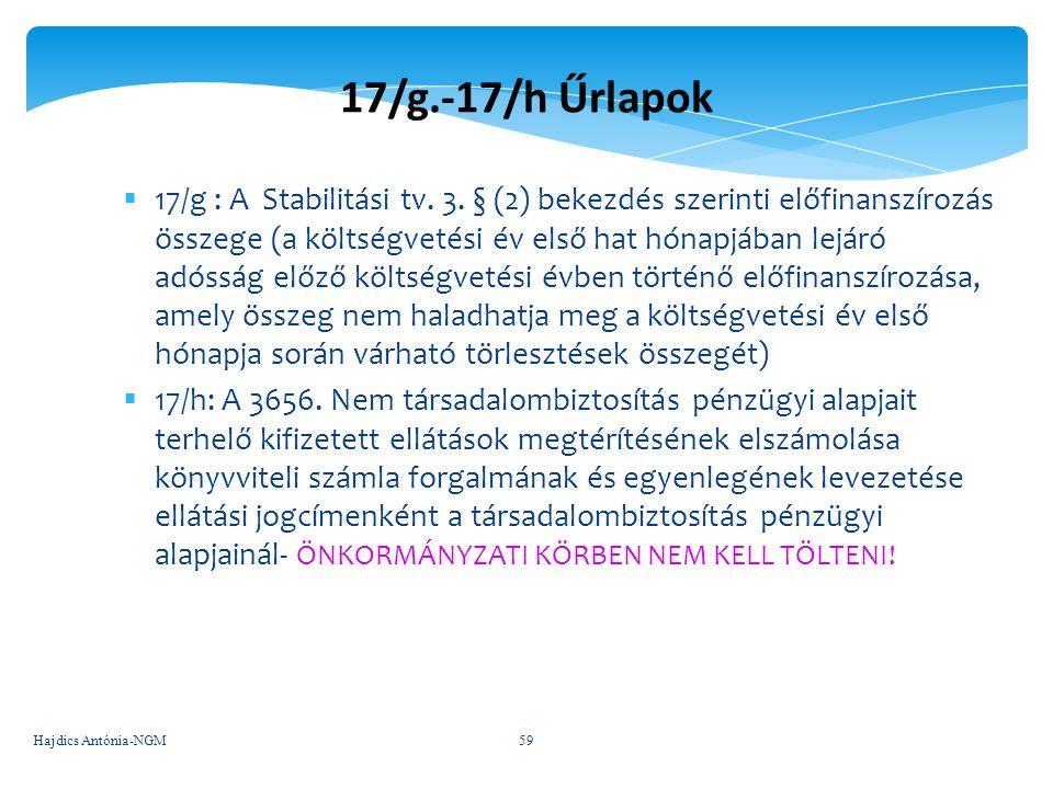 17/g.-17/h Űrlapok  17/g : A Stabilitási tv. 3. § (2) bekezdés szerinti előfinanszírozás összege (a költségvetési év első hat hónapjában lejáró adóss
