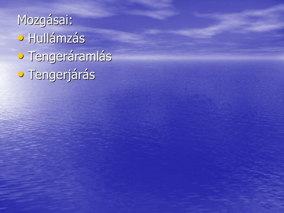Hullámzás A tengerfelszín feletti légnyomáskülönbség és a fellépő szél kelti a hullámzást → a vízszint emelkedik és süllyed A tengerfelszín feletti légnyomáskülönbség és a fellépő szél kelti a hullámzást → a vízszint emelkedik és süllyed Ebben a vízszemcsék körpályán gördülő mozgást végeznek, tehát maga a hullám nem mozog Ebben a vízszemcsék körpályán gördülő mozgást végeznek, tehát maga a hullám nem mozog A kiemelkedő hullámhegy hullámvölgyé esik vissza, ennek a ritmikus váltakozása kelti a mozgás látszatát A kiemelkedő hullámhegy hullámvölgyé esik vissza, ennek a ritmikus váltakozása kelti a mozgás látszatát