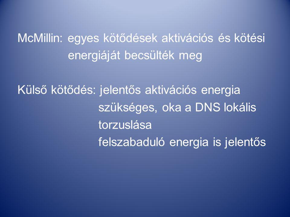 McMillin: egyes kötődések aktivációs és kötési energiáját becsülték meg Külső kötődés: jelentős aktivációs energia szükséges, oka a DNS lokális torzuslása felszabaduló energia is jelentős