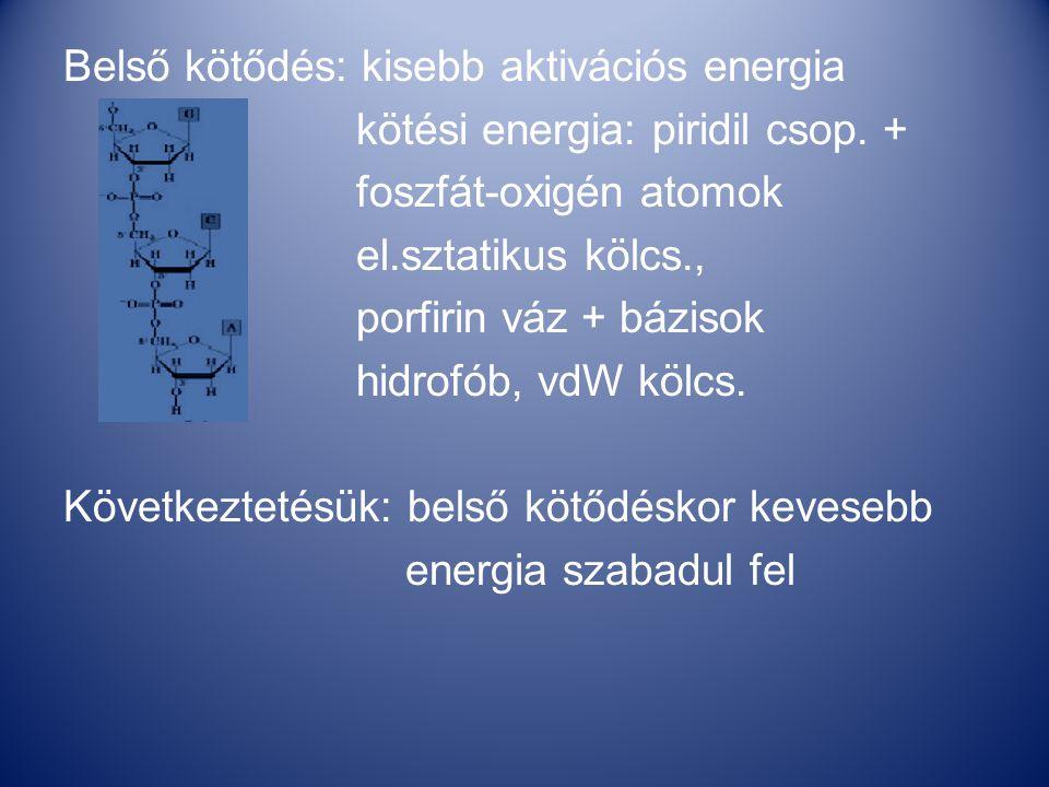 Belső kötődés: kisebb aktivációs energia kötési energia: piridil csop.