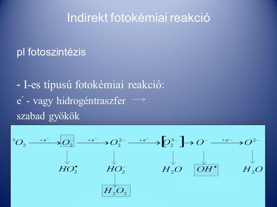 Indirekt fotokémiai reakció pl fotoszintézis - I-es típusú fotokémiai reakció: e - - vagy hidrogéntraszfer szabad gyökök