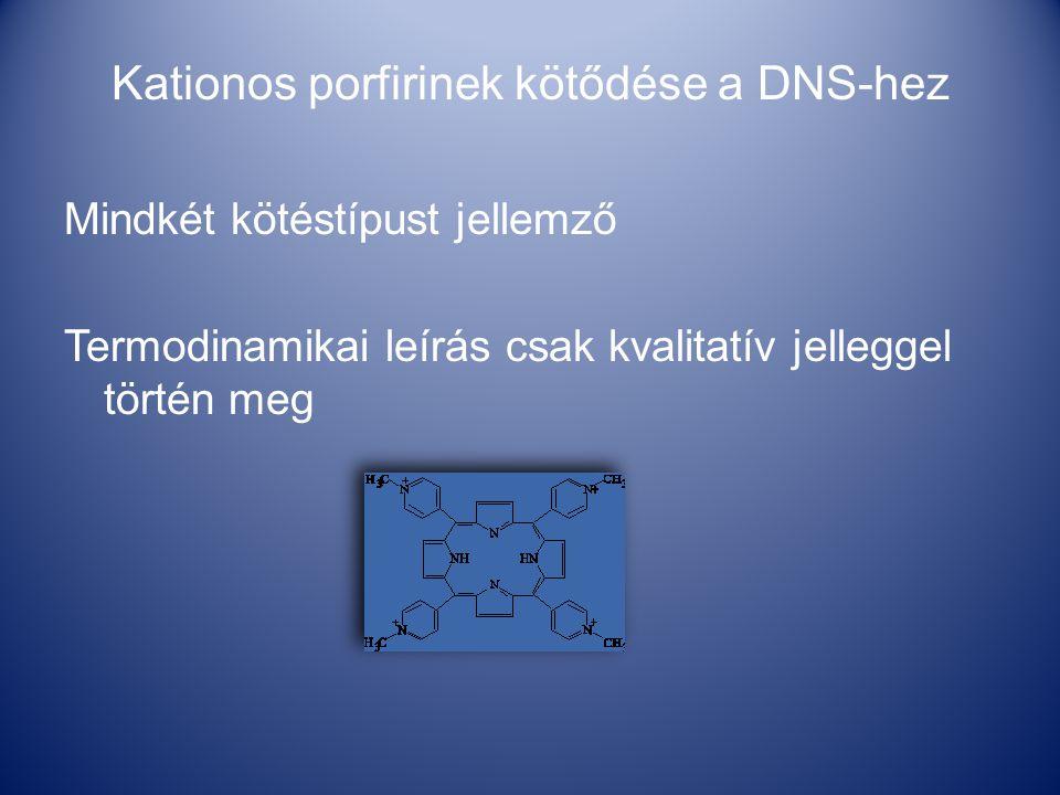Kationos porfirinek kötődése a DNS-hez Mindkét kötéstípust jellemző Termodinamikai leírás csak kvalitatív jelleggel történ meg