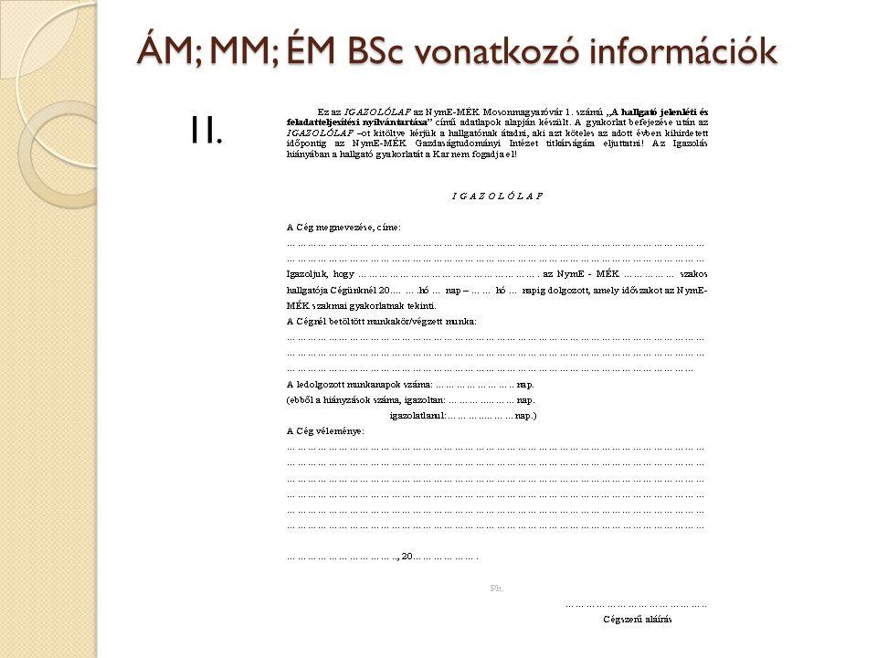 ÁM; MM; ÉM BSc vonatkozó információk 1I.