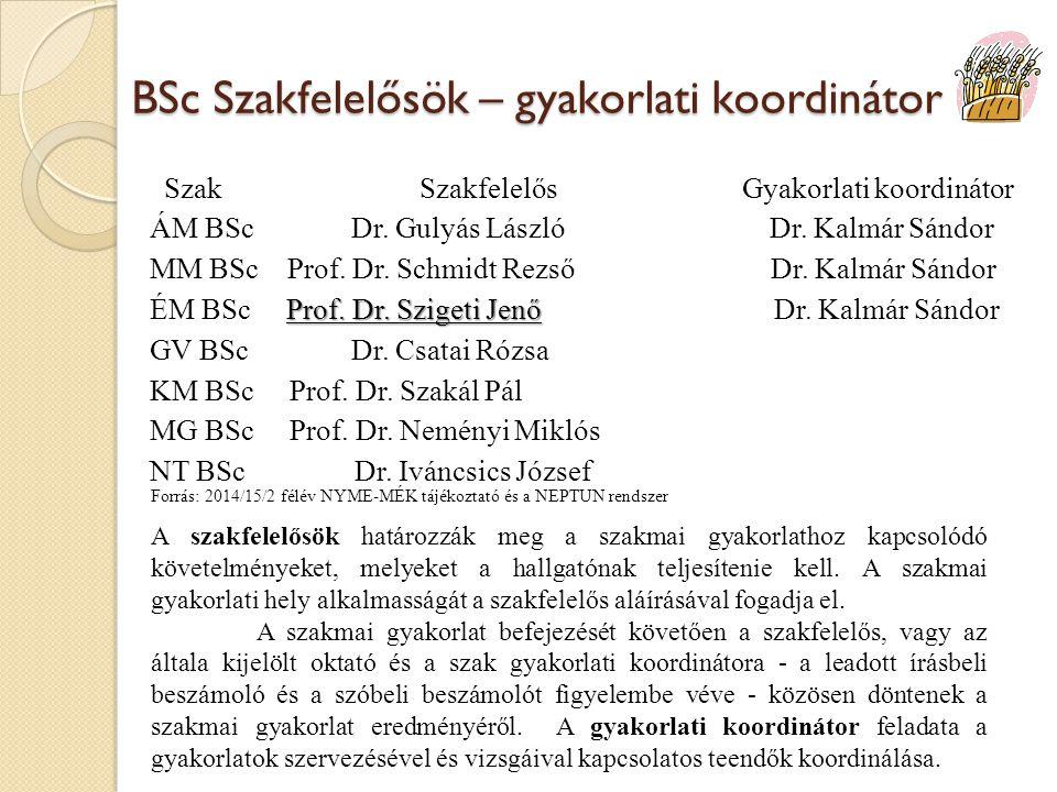 BSc Szakfelelősök – gyakorlati koordinátor Szak Szakfelelős Gyakorlati koordinátor ÁM BSc Dr. Gulyás László Dr. Kalmár Sándor MM BSc Prof. Dr. Schmidt