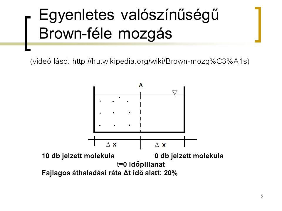 Egyenletes valószínűségű Brown-féle mozgás ∆ ∆ 10 db jelzett molekula0 db jelzett molekula t=0 időpillanat Fajlagos áthaladási ráta Δt idő alatt: 20%