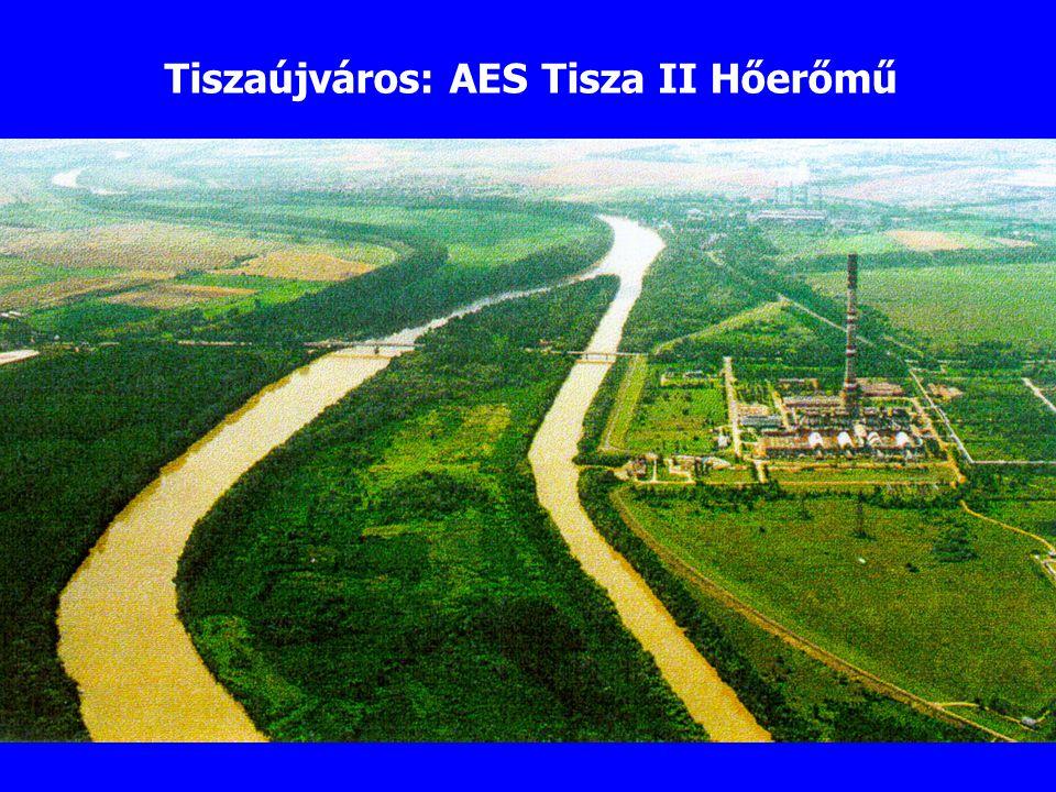 Tiszaújváros: AES Tisza II Hőerőmű