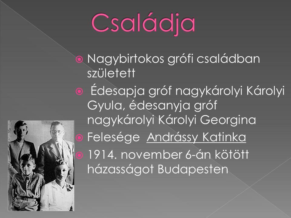  Nagybirtokos grófi családban született  Édesapja gróf nagykárolyi Károlyi Gyula, édesanyja gróf nagykárolyi Károlyi Georgina  Felesége Andrássy Ka